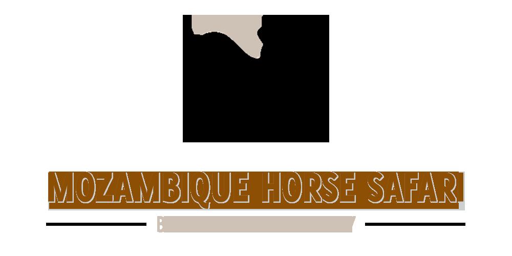 African Horseback Safari